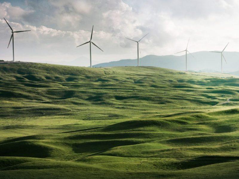 Die Digitalisierung & die Ökologie