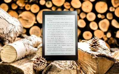Der Untergang der Buchhandlungen
